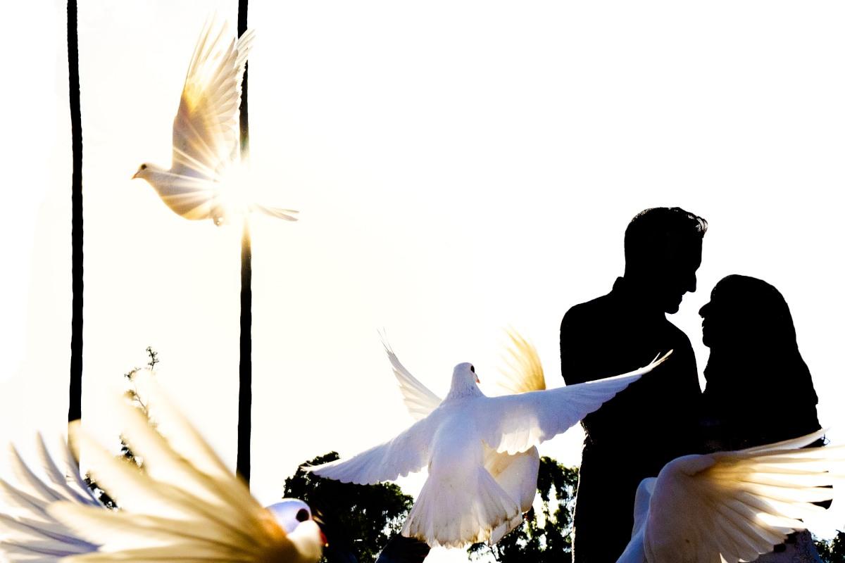 fotógrafo de bodas Arroyomolinos